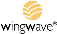WingWave® coaching
